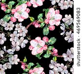flower apple with flower cherry ... | Shutterstock . vector #469569083
