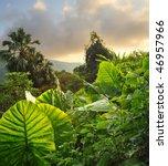 majestic landscape | Shutterstock . vector #46957966