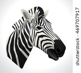 Vector Illustration Of A Zebra...