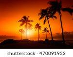 tropical sunset | Shutterstock . vector #470091923