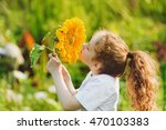 joyful child smell sunflower... | Shutterstock . vector #470103383