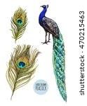 beautiful vector illustration... | Shutterstock .eps vector #470215463