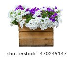 Large Wooden Pot Of Petunias...
