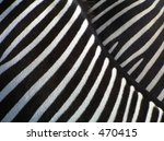 details of zebra | Shutterstock . vector #470415