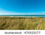 Natural Landscape With The...