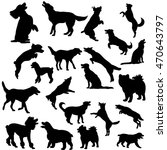 Stock vector vector isolated on white background big set of silhouettes of dogs 470643797