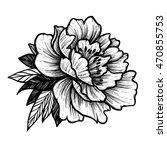 hand drawn vector illustration  ... | Shutterstock .eps vector #470855753
