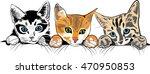 Stock vector kittens 470950853