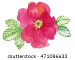 abstract watercolor rose.... | Shutterstock . vector #471086633