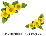 composition from sunflowers... | Shutterstock . vector #471107693
