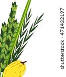 closeup of lulav  date palm  ...   Shutterstock .eps vector #471432197