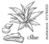 aloe vera plant hand drawn... | Shutterstock .eps vector #471783323
