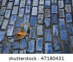 Fallen Leaf On Blue Brick Street