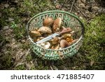 Basket With Mushrooms And A...