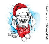 Christmas Card. Portrait Of A...