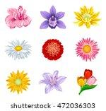 set flower | Shutterstock .eps vector #472036303