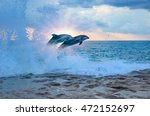 couple jumping dolphins | Shutterstock . vector #472152697