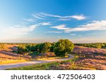 blooming heathland with road at ... | Shutterstock . vector #472506403