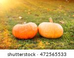 Harvest  Prepare For Halloween...