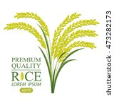 rice. vector illustration. | Shutterstock .eps vector #473282173