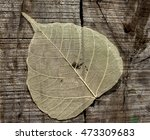 dry leaf on wood background | Shutterstock . vector #473309683