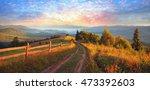 sunrise  the sun's rays... | Shutterstock . vector #473392603