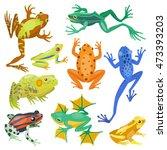 frog cartoon tropical animal... | Shutterstock .eps vector #473393203