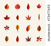 autumn leaves vector collection ... | Shutterstock .eps vector #473477653