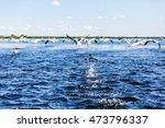 landscape photo of flying water ... | Shutterstock . vector #473796337