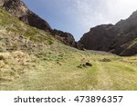 light summer at guruan saikhan... | Shutterstock . vector #473896357
