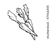 drawing of carrots   Shutterstock .eps vector #47416345