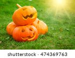 Ripe Pumpkins For Halloween On...