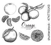 orange   fruit vector element...   Shutterstock .eps vector #474770143