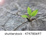 new development and renewal as... | Shutterstock . vector #474780697