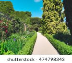 welsh gardens with flowers and... | Shutterstock . vector #474798343