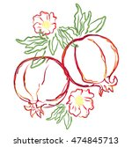 pomegranate. hand drawn... | Shutterstock .eps vector #474845713