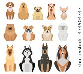 Stock vector vector illustration of different dogs breed isolated on white background 474904747