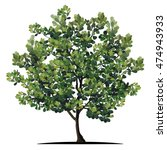 tree with a realistic | Shutterstock .eps vector #474943933