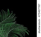 leaves of palm tree on black... | Shutterstock . vector #475407787