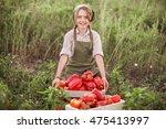 the children gather harvest of... | Shutterstock . vector #475413997