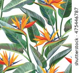 seamless tropical pattern with... | Shutterstock .eps vector #475446787