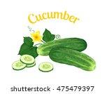 cucumber. vector illustration... | Shutterstock .eps vector #475479397