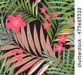 colorful tropical flower  plant ... | Shutterstock .eps vector #475685533