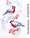 winter.birds  bullfinch on tree ... | Shutterstock . vector #476023573