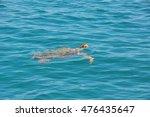 caretta greece dive head... | Shutterstock . vector #476435647