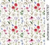wild flowers illustrations.... | Shutterstock . vector #477387787