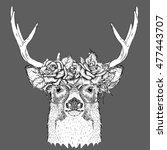 hand draw portrait of deer...   Shutterstock .eps vector #477443707