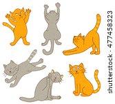Vector Set Of Cats In Differen...