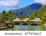 island of moorea in the french... | Shutterstock . vector #477476617