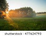 rural landscape  field and grass | Shutterstock . vector #477624793